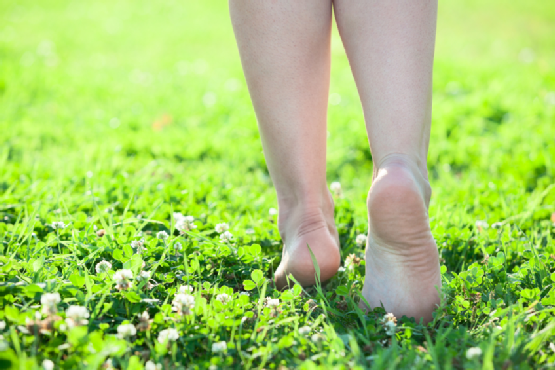 Female beautiful legs stepping on green grass